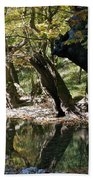 Tree In The River Beach Towel