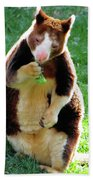 Tree Kangaroo Beach Towel
