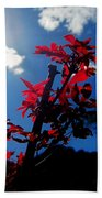 Tree Leaves Red 061814a Beach Towel
