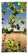 Tree Leaves Beach Towel