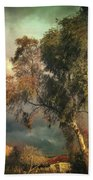 Tree Of Confusion Beach Towel