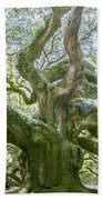 Tree Of History Beach Towel