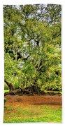 Tree Of Life 2 - Paint  Beach Towel