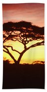 Tree Of Life Africa Beach Towel