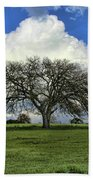 Tree Of Life Style Oak Tree And Coluds Beach Towel