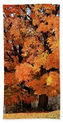 Tree On Fire Beach Towel