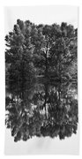 Tree Reflection In Black And White Beach Towel
