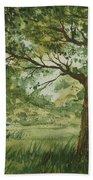 Tree Shadows Beach Towel