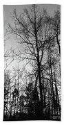 Tree Silhouette II Bw Beach Towel