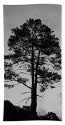 Tree Silhouette In The Dark Beach Towel