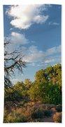 Tree Sky Utah Beach Towel