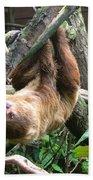 Tree Sloth Beach Towel