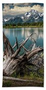 Tree Stump On The Northern Shore Of Jackson Lake At Grand Teton National Park Beach Towel