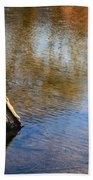 Tree Stump Surrounded By Water Beach Towel