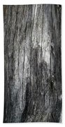 Tree Trunk Abstract Detail Beach Towel