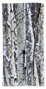 Tree Trunks Covered With Snow In Winter Beach Towel