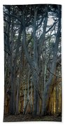 Tree Wall Beach Towel