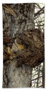 Tree Wart Beach Towel