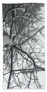 Tree Wrapped In Snow Beach Towel