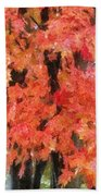Trees Aflame Beach Towel