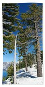 Trees And Snag At Crater Lake Beach Towel