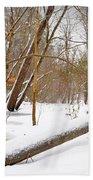 Trees And Snow Beach Towel