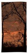 Trees And Sunrise Beach Towel