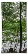 Trees At Lake Schlachtensee Beach Towel