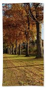 Trees At The Park Beach Towel