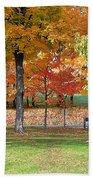 Trees Begins Autumn Color Beach Towel