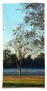 Trees By The Water Beach Towel