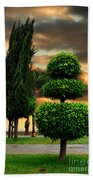 Trees In A Park Of Limassol City Sea Front In Cyprus Beach Towel