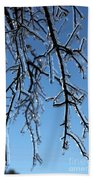 Trees In Ice Beach Towel