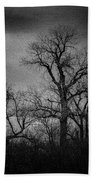 Trees In Storm In Black And White Beach Towel