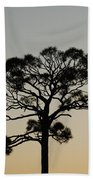 Trees In Sunset Beach Towel