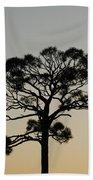 Trees In Sunset Beach Sheet