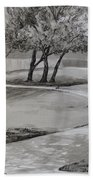 Trees In The Park Beach Towel