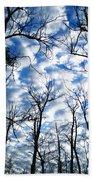 Trees In The Sky Beach Towel