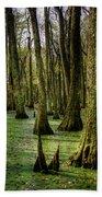 Trees In The Swamp Beach Towel