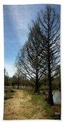 Trees In Water Garden Beach Sheet