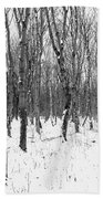 Trees In Winter Snow, Black And White Beach Towel