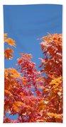 Trees Landscape Art Print Fall Tree Leaves Baslee Troutman Beach Towel