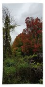 Trees Of Colorful Leaves In Autumn Mi Beach Towel