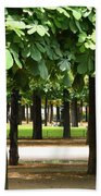 Trees Of Tuilieres Beach Towel