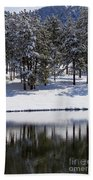 Trees Reflecting In Duck Pond In Colorado Snow Beach Towel