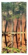 Trees Reflecting Beach Towel