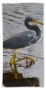 Tri-colored Heron Wading In The Marsh Beach Towel