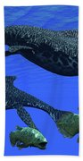 Triassic Shonisaurus Marine Reptile Beach Towel