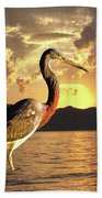 Tricolored Heron At Sunset Beach Towel