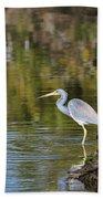 Tricolored Heron Fishing Beach Towel